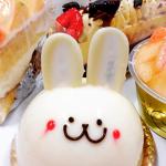 【有名パティシエの店!】ムッシュマキノのおすすめケーキ5選