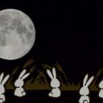 【十五夜にみんなで頂く】お月見スイーツレシピまとめ