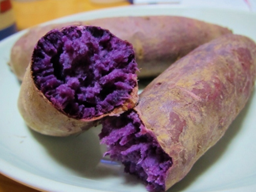 紫芋が売ってないのはなぜ?その理由と入手方法を調べてみた!