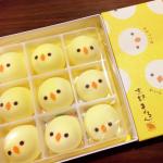 【超胸キュン♡】京都で見つけたかわいいお菓子のお土産5選