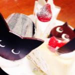【猫マニアも夢中♡】シャノワールの可愛いケーキメニューまとめ