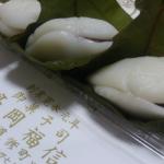 【マニアが教える】大阪で柏餅が有名な和菓子屋さんまとめ