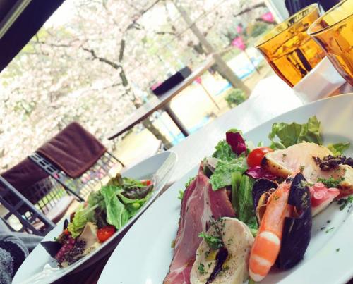 【店内からまったりお花見!】桜が見えるカフェ@大阪まとめ