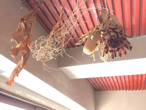 珈琲焙煎所-旅の音-の店内、店主のセンスが光るドライフラワーなどが飾られる。