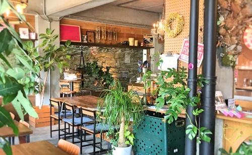和歌山のカップケーキ店、カップスの緑あふれる店内