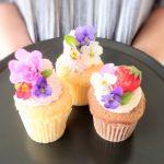 【松山】愛媛で唯一のカップケーキ屋さんサードストリートさん