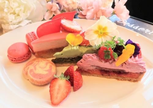 赤、緑、紫などの彩豊かなケーキやタルト